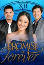 Affiche The Promise of Forever