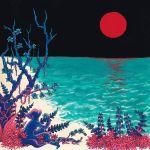 Pochette the first glass beach album