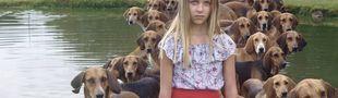 Cover chiens dans films