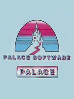 Logo Palace Software