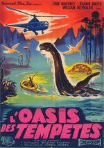 Affiche L'Oasis des tempêtes