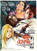 Affiche La Nuit de l'iguane