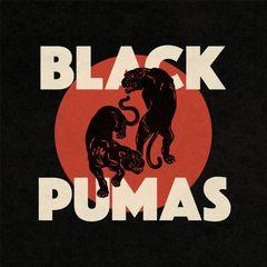 Pochette Black Pumas