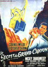 Affiche Le Secret du Grand Canyon