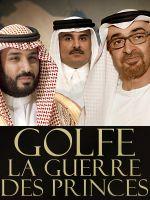 Affiche Golfe, la guerre des princes