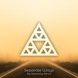 Pochette Separate Ways (Big Skapinsky remix)