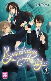 Couverture Mysterious Honey