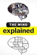 Affiche Le cerveau, en bref