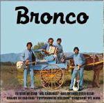 Pochette Bronco