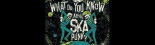 Cover Le meilleur du ska punk !
