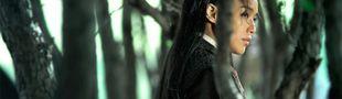 Cover Mes films chinois/hongkongais/taiwanais