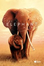 Affiche The Elephant Queen