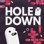Jaquette Holedown