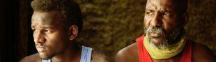 Cover Les meilleurs films africains