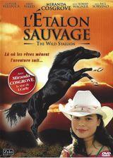 Affiche L'Étalon sauvage