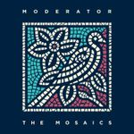 Pochette The Mosaics
