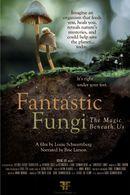 Affiche Fantastic Fungi