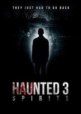 Affiche Haunted 3: Spirits