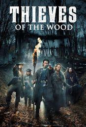 Affiche Bandits des bois