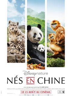 Affiche Nés en Chine