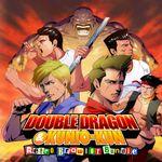 Jaquette Double Dragon & Kunio-kun: Retro Brawler Bundle