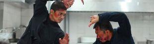 Cover Martial Arts 2010s