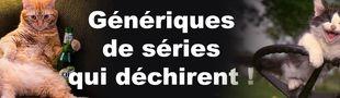 Cover GENERIQUES 70'80' DE SERIES ET EMISSIONS QUI DECHIRENT SA RACE