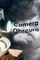 Cover Le Fossoyeur de Films : CAMERA OBSCURA