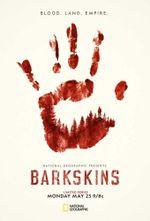 Affiche Barskins