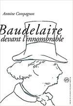 Couverture Baudelaire devant l'innombrable