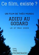Affiche Adieu au Godard