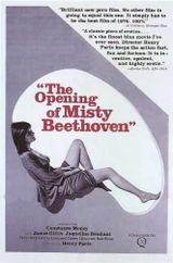 Affiche L'initiation de Misty Beethoven