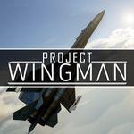 Jaquette Project Wingman