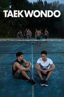 Affiche Taekwondo