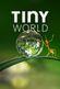 Affiche Tiny World