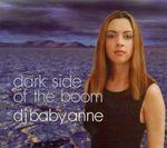 Pochette Dark Side of the Boom