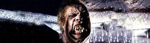 Cover Les meilleurs films de monstres