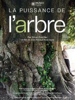 Affiche La Puissance de l'arbre avec Ernst Zürcher