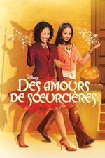 Affiche Des amours de sœurcières