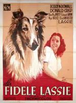 Affiche La Fidèle Lassie