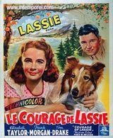 Affiche Le Courage de Lassie