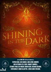 Couverture Shining in the dark