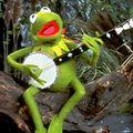 Avatar l'homme grenouille