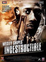 Affiche Indestructible