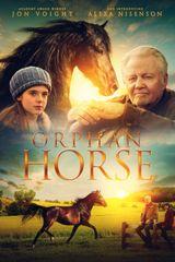 Affiche Orphan Horse