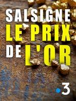 Affiche Salsigne : le prix de l'or