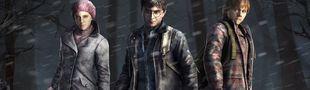 Cover Top jeux vidéo: Harry Potter