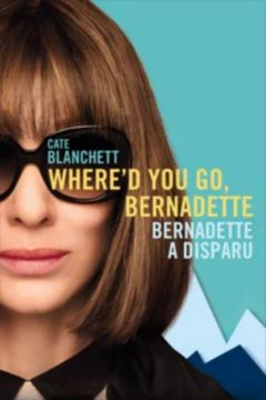 Affiche Bernadette a disparu