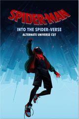 Affiche Spider-Man : New Generation - Version Alternative