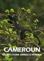 Affiche Cameroun - Secrets d'une jungle d'Afrique